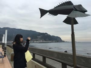 20160212thefish06
