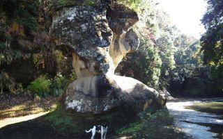 犬の形をした奇岩の前で記念撮影する